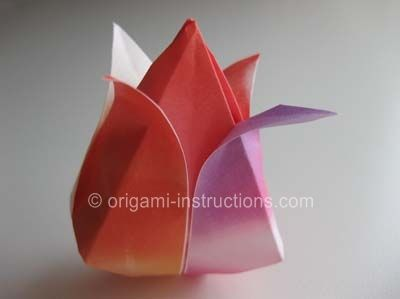 origami tulip instructions pdf