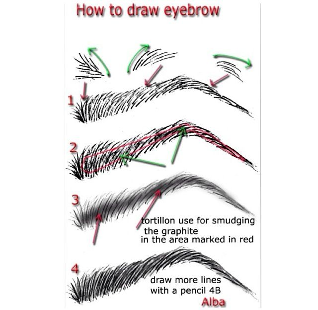 draw like a pro video instructions